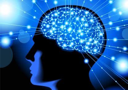 Ученые: мозг — как вино, чтобы раскрыться, ему нужны десятилетия ...