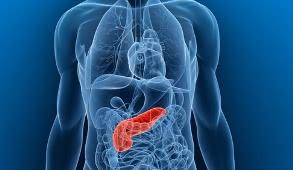 воспаление поджелудочной железы, лечение панкреатита в Израиле