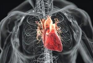 сердце, лечение порока сердца в израиле